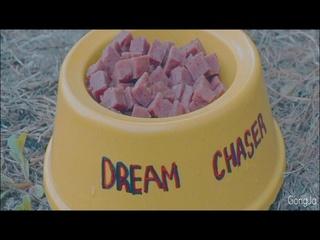 Dream Chaser (드림체이서)