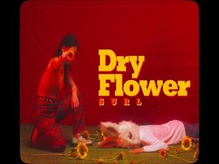 Dry Flower (Teaser)