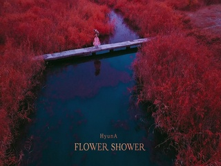FLOWER SHOWER (Teaser)