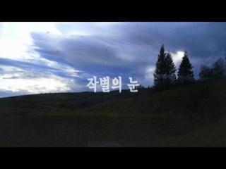 작별의 눈 (Feat. 김성완)