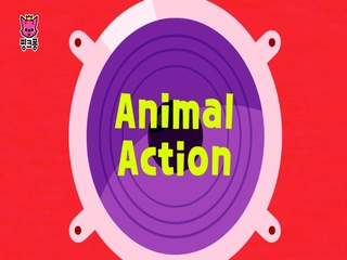 Animal Action