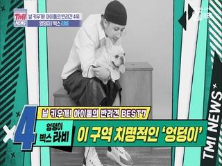 [23회] 엉덩이 너무 귀엽덩 '엉덩이♥빅스 라비'