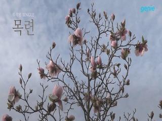 류석원 - [깊은 밤을 건너] '목련' Lyric Video