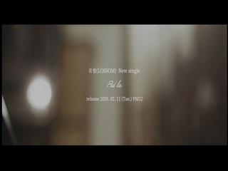 Bad lies (Teaser)
