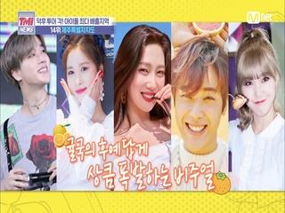 [29회] 상큼 폭발하는 귤국의 후예들 '제주특별자치도'