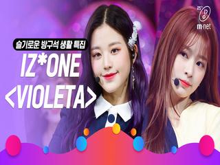 [슬기로운 방구석 생활 특집] 아이즈원(IZ*ONE) - 비올레타(Violeta)