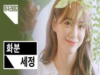 [4K] 세정 (SEJEONG) - 화분 (Plant) | 사각라이브 Square Live