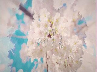 다시 온 봄