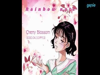 레인보우 노트 (Rainbow note) - [Cherry Blossom] TEASER