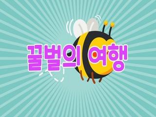 꿀벌의 여행