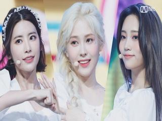 '최초 공개' 청순함의 대명사 '다이아'의 '감싸줄게요' 무대