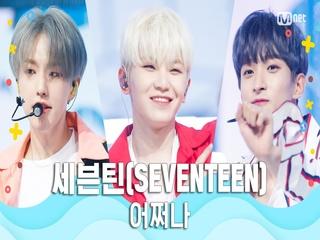 [여름 완전 정복] 세븐틴(SEVENTEEN) - 어쩌나
