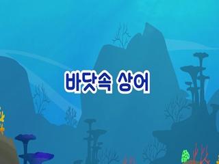 바닷속 상어