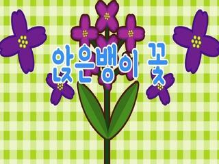 앉은뱅이 꽃