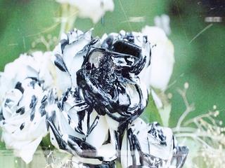 7th Mini Album 'Unforgettable' : Concept Trailer #Obliviate