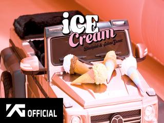 Ice Cream (With Selena Gomez) (M/V MAKING FILM)