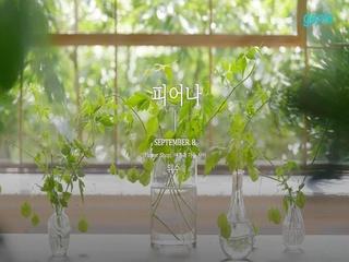 위수 (WISUE) - ['Flower Shop' : 여름과 가을 사이] '피어나' 트랙 코멘터리
