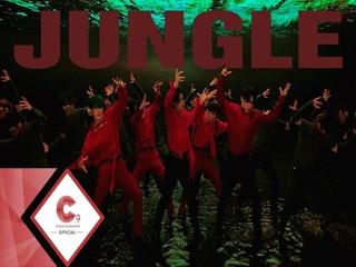정글 (Jungle)