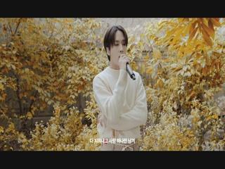 낙엽 (Feat. 10CM) (Live Clip)