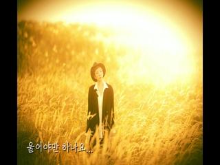 목비 (Feat. 김신우) (Lyric Video)
