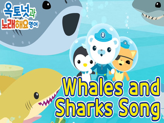 Whales and Sharks song