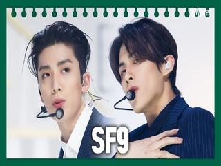 [동아리 특집] SF9 - Good Guy
