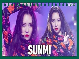 [동아리 특집] 선미(SUNMI) - 가시나