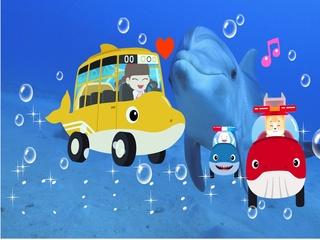 바다동물 자동차