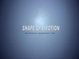 Shape Of Emotion (Feat.TFS)