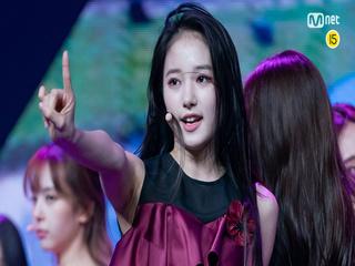 [999 세로직캠] C-GROUP | 천신웨이 CHEN HSIN WEI @CONNECT MISSION