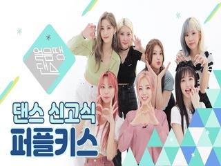 [4K] 퍼플키스가 'SOMI - DUMB DUMB'을 춘다면? | Stray kids, SVT, Taeyeon, Chungha | 댄스신고식 | 얼음땡댄스