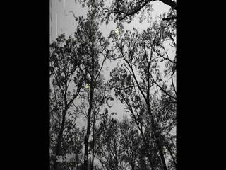 Rainy Day (Feat.이지영 of 빅마마)