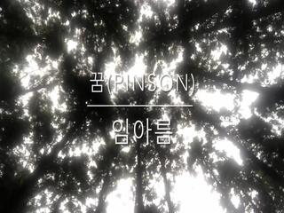 꿈 (Pinson)