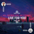 Live For You (Feat. Abe Stewart)