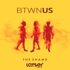 The Shame (Layser Remix)