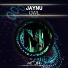 Owl (Original Mix)