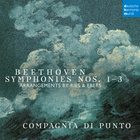 Symphony No. 2 in D Major, Op. 36 : II. Larghetto (Arr. for Small Orchestra by Ferdinand Ries)