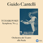 Symphony No. 5 in E Minor, Op. 64 : I. Andante - Allegro con anima (Streaming Ver.)